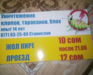 Уничтожение  клопов блох таракан крыс гарантия качества в Бишкек