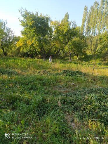 Сдам в аренду - Кыргызстан: Сдам в аренду соток Строительство
