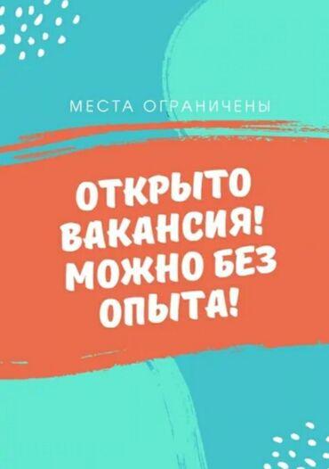 Работа - Бишкек: Консультант сетевого маркетинга. Любой возраст. 5/2