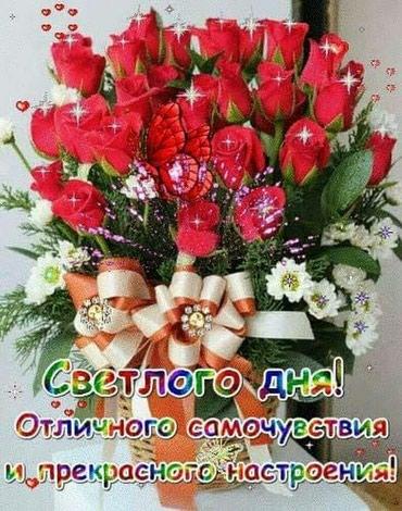 ad-image-51249241