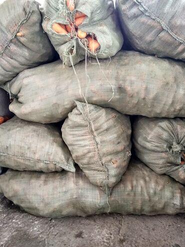 Прозрачные решетки на окна цена - Кыргызстан: Продаю морковку кормовой'