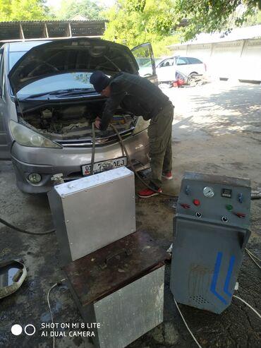 снять девушку в бишкеке in Кыргызстан | ДОЛГОСРОЧНАЯ АРЕНДА КВАРТИР: Климат-контроль | Промывка, чистка систем автомобиля