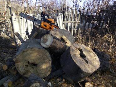 Пилю дрова. Сварочные работы.Покраска ворот. в Бишкек