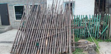 бу искусственный газон в Кыргызстан: Павловния–деревос красивыми стеблями продаю для забора, идет как