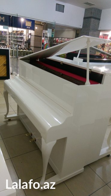 rönisch - Azərbaycan: Rönisch piano - royal modelli, gözel seslenmeye sahib ince pianodur