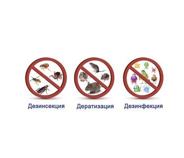 Дезенфекция полное уничтожение в Бишкек