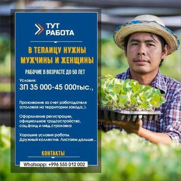 платья для полных женщин бишкек в Кыргызстан: 000599   Россия. Сельское хозяйство. Полный рабочий день