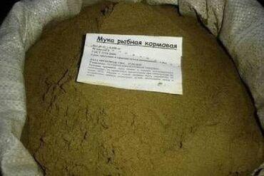 Рыбная мука пр- во россия протеин по сертификату 59-65 %для коров
