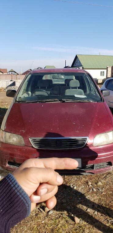 продажа квартир в бишкеке в Кыргызстан: Honda Odyssey 2.4 л. 1995 | 29000 км