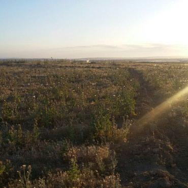 Bakı şəhərində Tecili  torpag satilir   unvan Baki sheri Ezizbeyov  rayonu   dubendi