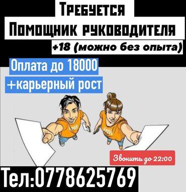 alfa romeo gtv 18 mt в Кыргызстан: Помощник. Без опыта. 5/2