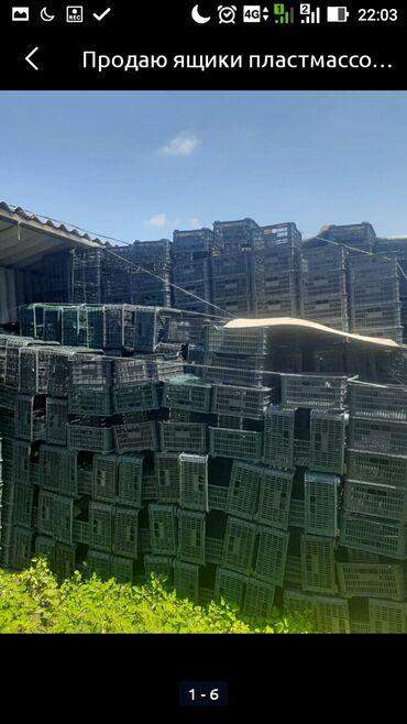 железные-ящики в Кыргызстан: Продаются пластмассовые ящики