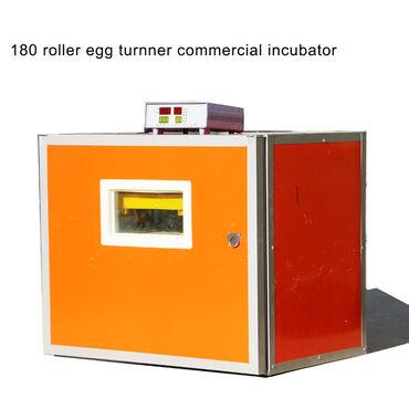 Zavod istehsali inkubator, çıxış faizi 95dən yuxarı, universaldi