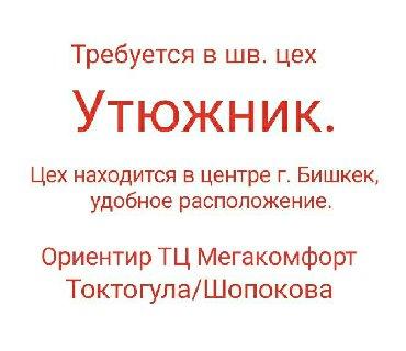 Утюжники - Кыргызстан: Утюжник. Меньше 1 года опыта. Цум