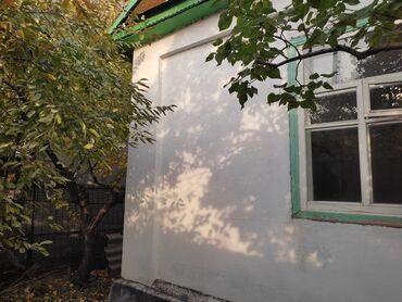 собачий рынок бишкек in Кыргызстан | МАГАЗИНЫ: 30 кв. м, 2 комнаты, Утепленный, Парковка, Сарай