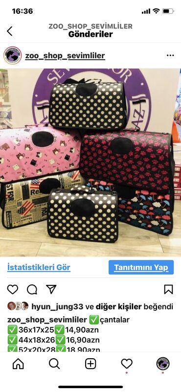 pulsuz it verilir - Azərbaycan: It çantaları