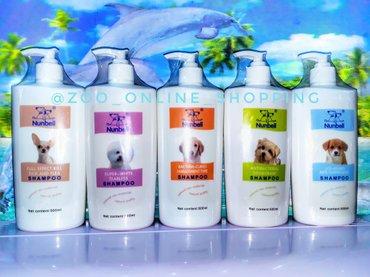 Bakı şəhərində Itler ucun antibakterial ve tuklerinin gozel gorunmesi ucun shampun