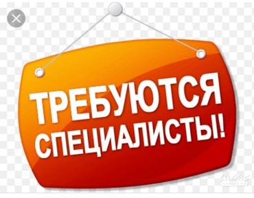 Срочно требуется специалист в отдел в Бишкек