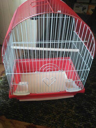 Клетка для попугаев. Размеры: высота 30см, ширина 38см