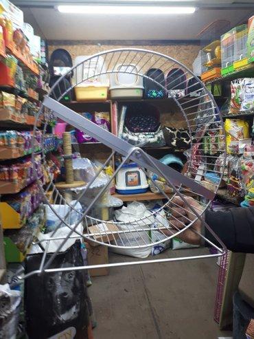 продаются металлические колеса для грызунов(белки. свинки. хомячки)раз в Бишкек