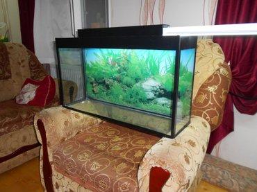 Bakı şəhərində Teze akvarium qapaqi var qapaqinda iwiq yeri var arxa fon wekili var