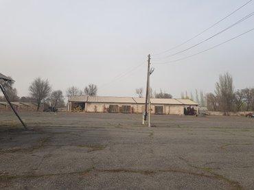 в Беловодское - фото 3