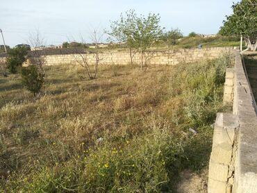 Недвижимость в Сумгайыт: Продам 6 соток Для сельского хозяйства от собственника