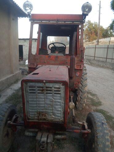 Транспорт - Чат Кёль: Трактор 25 Матор май жебейт