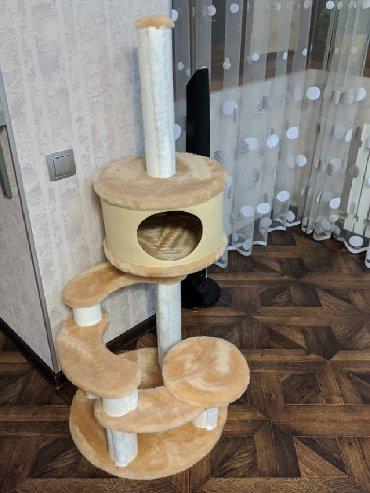 игровой домик для кошки в Кыргызстан: Продаю домик для кота в идеальном состоянии