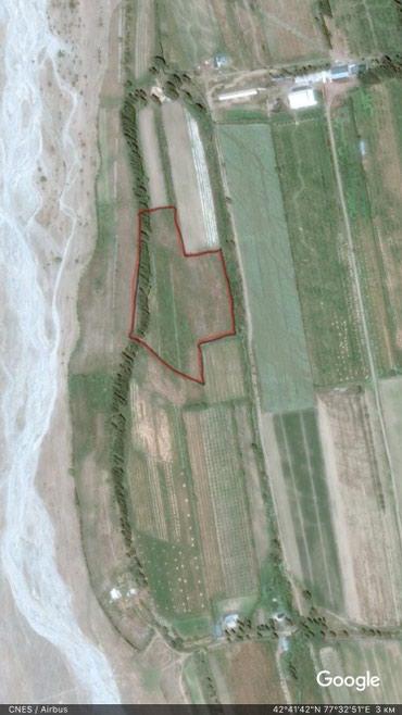Продается 2 Га земли в Семеновском АО. в Семеновка