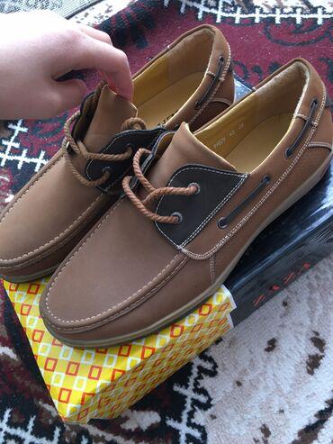 обувь для чихуахуа в Кыргызстан: Мужской, обувь ZAZA, размер 43