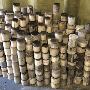 купить бус сапог в бишкеке в Кыргызстан: Катализатор, Установка новых катализаторов, катализаторы