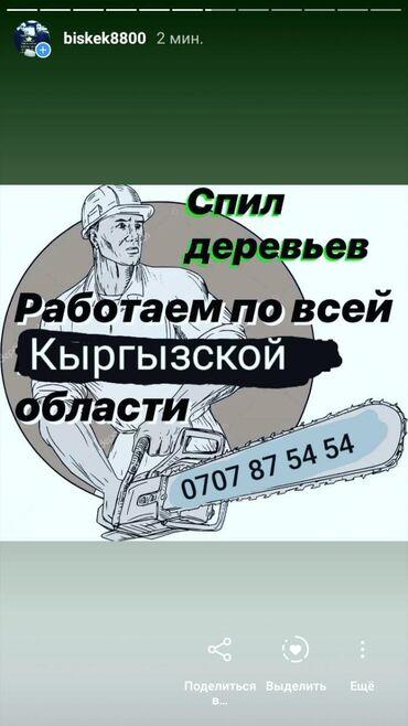 Садовые зонты - Кыргызстан: Спиль деревья По всему КыргызстануЛюбой сложностиБак жыгабыз Дарак