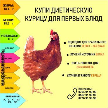 платье в Кыргызстан: Аз калориялуу тоок этин сатабыз !Биринчи тамактарга өтө ылайыктуу