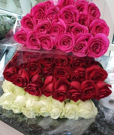 Акция! привозные розы Кения и в Бишкек