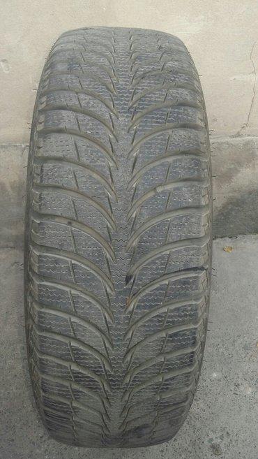 Kуплю одну зимнюю автошину САВА ЭСКИМО АЙС 185/65R14 в Бишкек