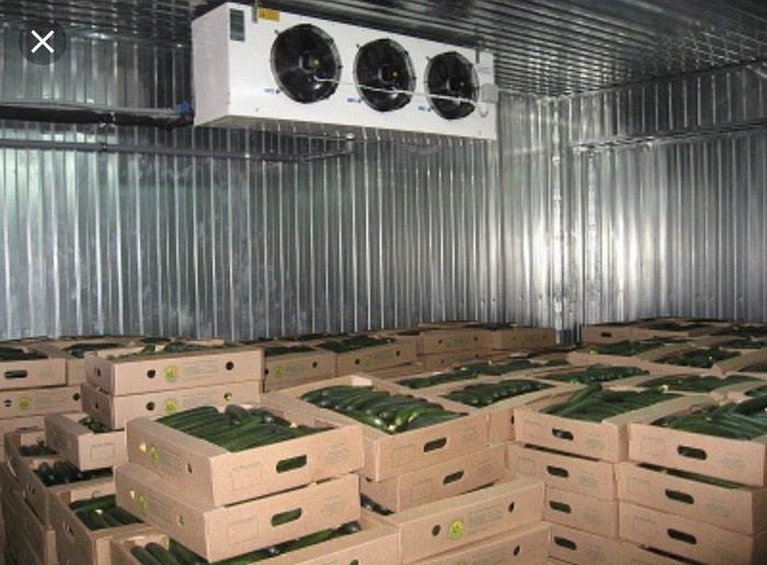 Картинки по запросу склады для хранения овощей и фруктов