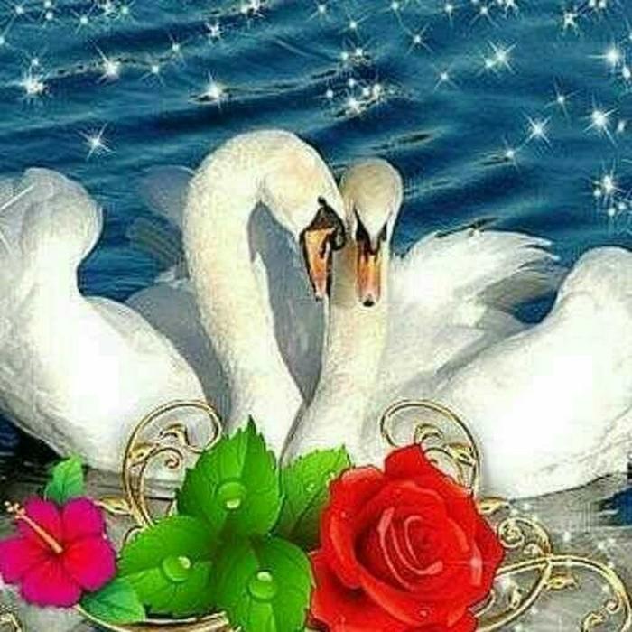 Открытки, открытки с днем свадьбы лебеди