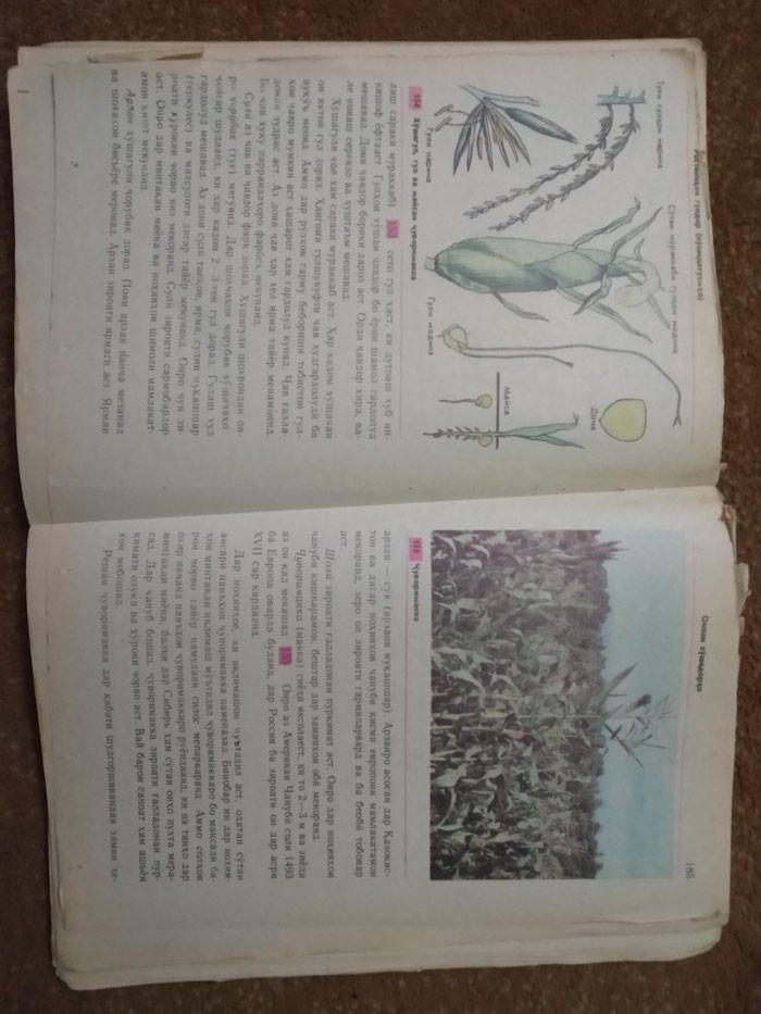 Биология 6-7. Photo 2