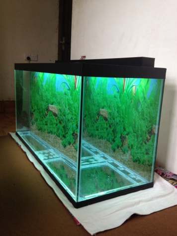 325 litrelik teze hazirlanip akvarium . Photo 1