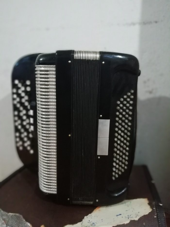 Harmonika Skala 80 basova u ekstra stanje dumetara sa koferom. Photo 3