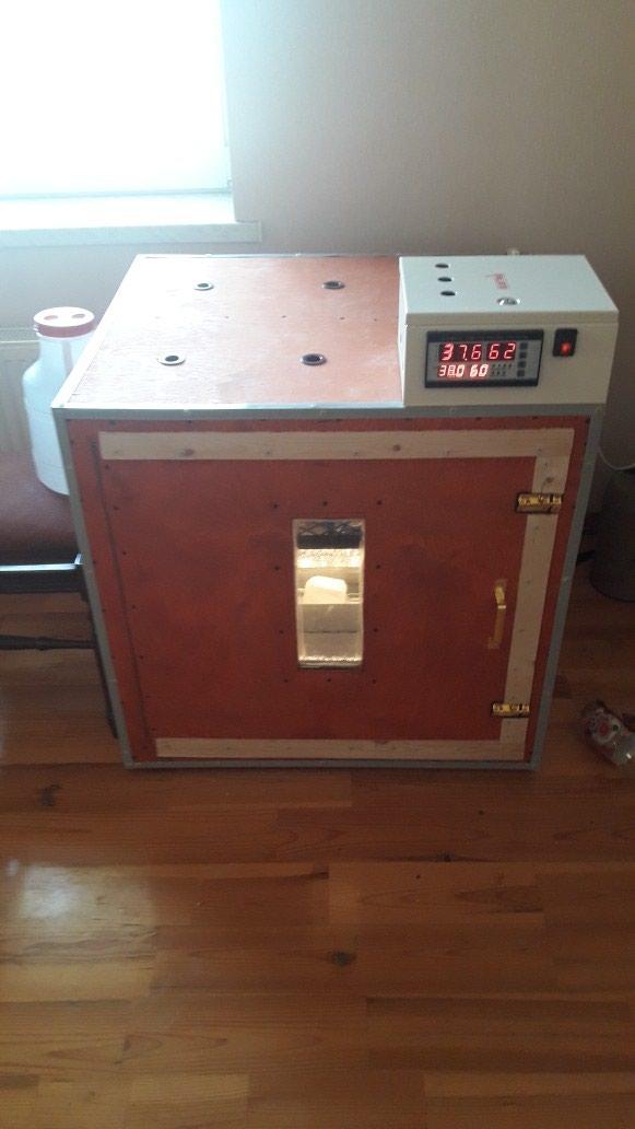 Inkubator. Photo 0