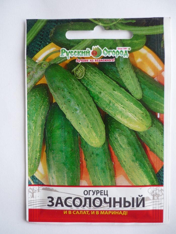 Семена огурцов для открытого грунта и пленочных укрытий.. Photo 0