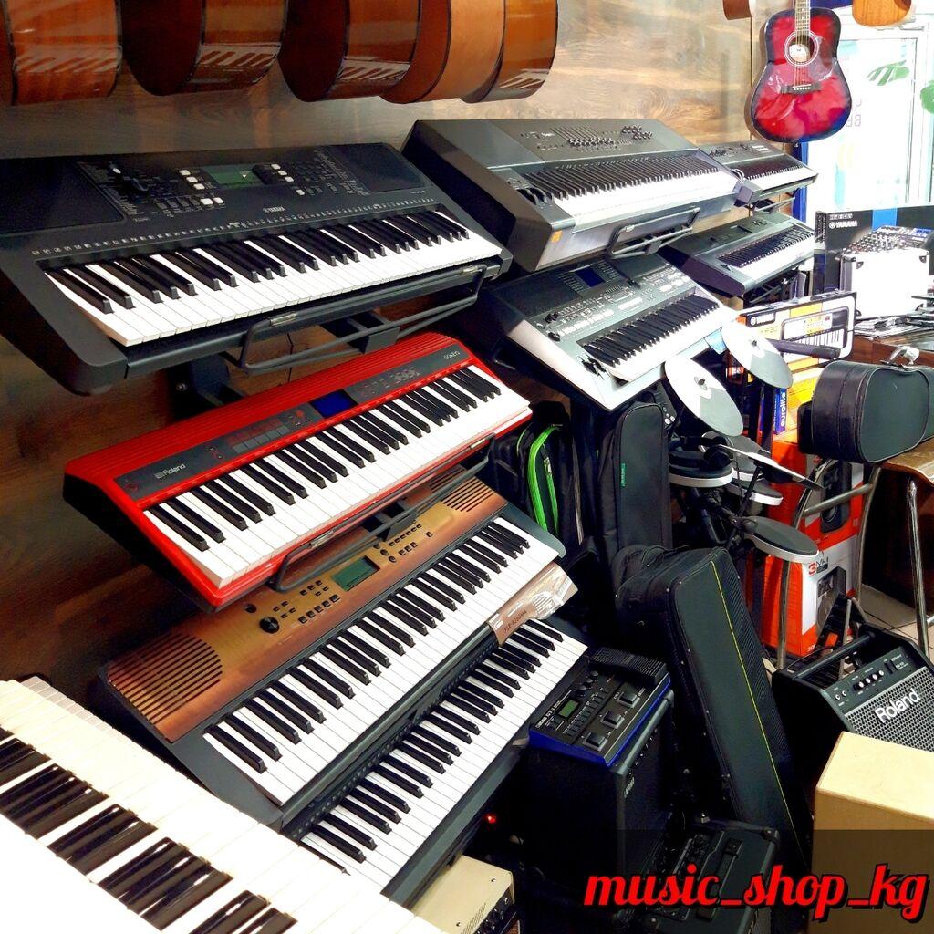 Синтезаторы/Электронные пианино/Акустические: Синтезаторы/Электронные пианино/Акустические