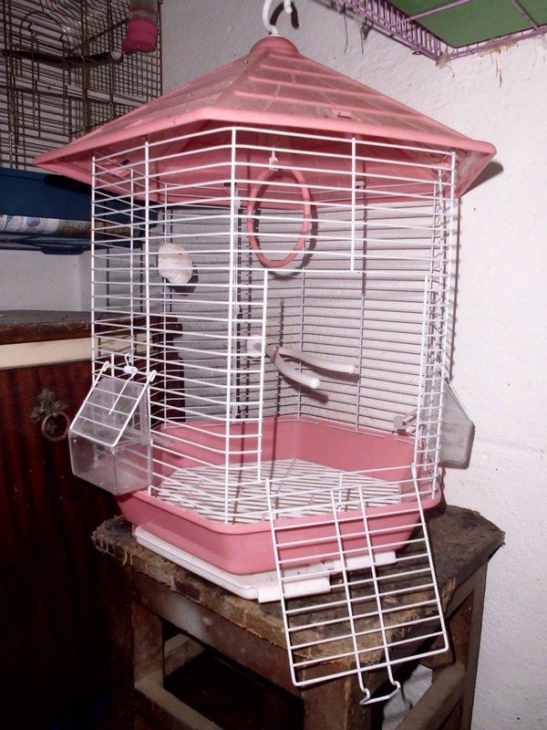 Продаю клетку для птиц. Длина - 34 см. Ширина - 34 см. Высота - 50 в Бишкек
