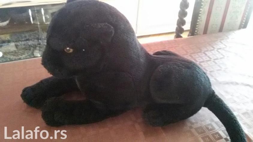Mala maca velika igračka