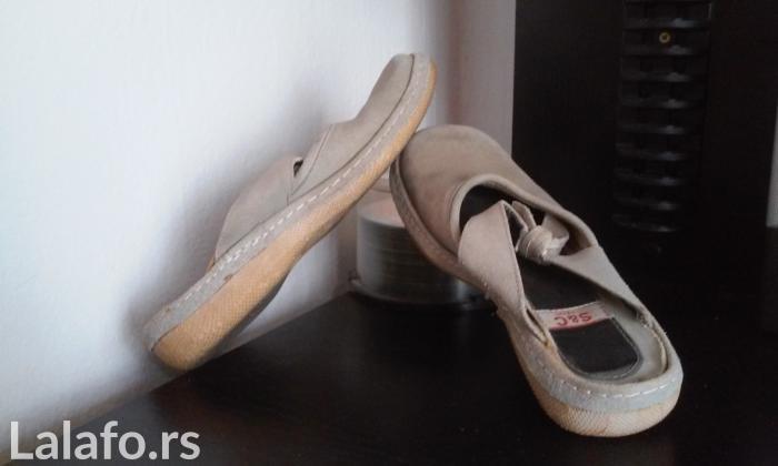 Zenske papuce S%C Company - Novi Sad