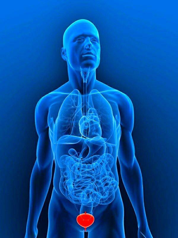 здоровье лечение простатита