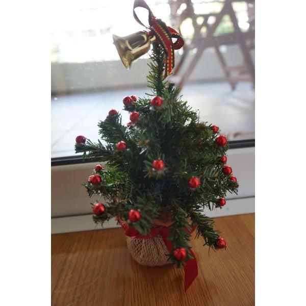 Χριστουγεννιατικο δεντρακι μικρο . Photo 0