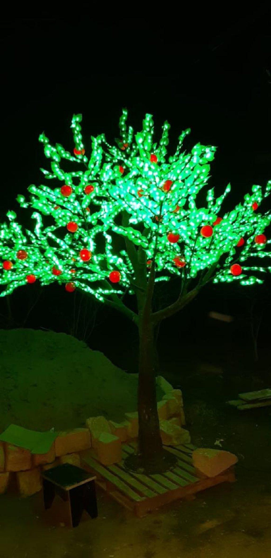 Let ağac satılır tecili bir neşe çeşidi var